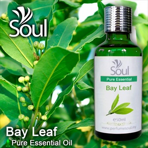 MInyak Pati Daun Bay - 50ml
