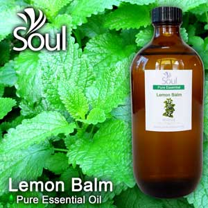 Minyak Pati Mint - Lemon Balm (Melissa Officinal) - 500ml