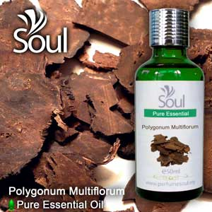 Minyak Pati Polygonum Multiflorum - 50ml