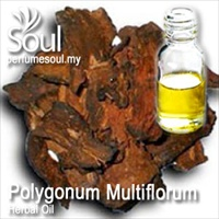 Minyak Herba Polygonum Multiflorum - 50ml